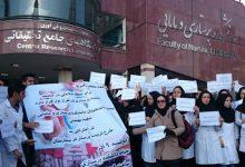 -Nurses
